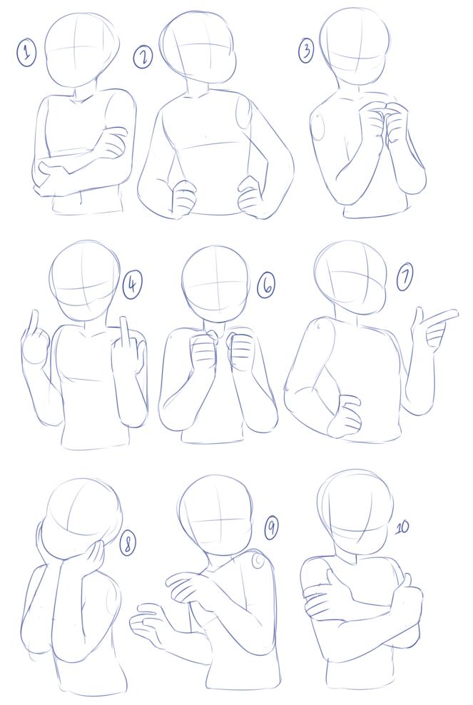 arms and torso.png