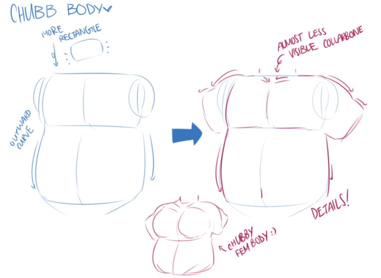 torso and waist 5.png