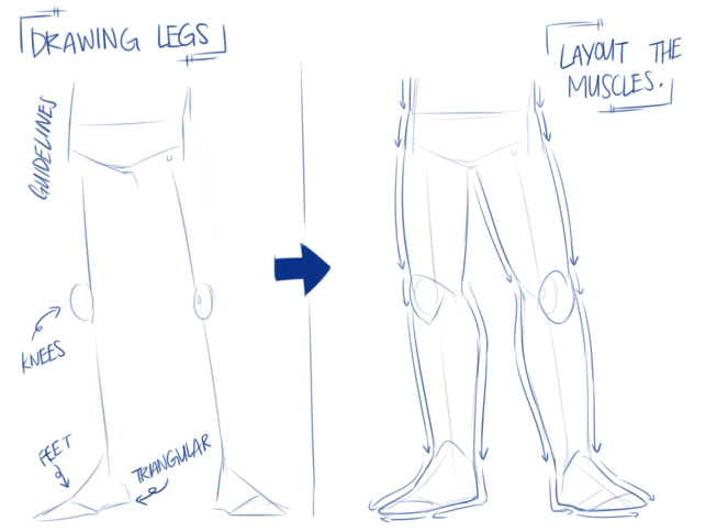 hip legs 4.png