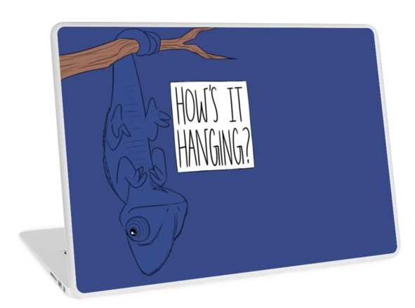 how's it hangin-laptop.png